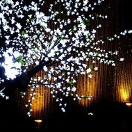 Illuminated Crystal Wall with LED Cherry Tree