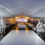 All White Dance Floor Framed by LED Willow Trees