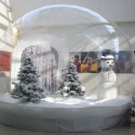 Snow Dome on Riser